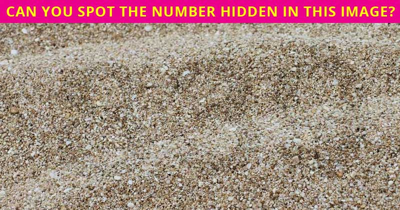 Almost No One Can Ace This Difficult Hidden Number Visual Test. How About You?