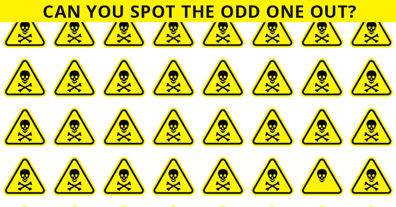 No One Can Score A Perfect 10 On This Odd One Out Test Without Cheating