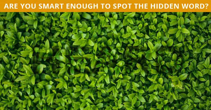 This Hidden Word Visual Game Will Determine Your Visual Perception Abilities In About 60 Seconds
