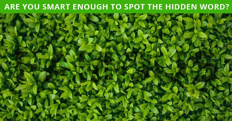This Hidden Word Visual Puzzle Will Determine Your Visual Perception Abilities In About One Minute