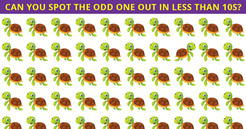 Amazing Odd One Out Test To Check Your Focusing Abilities Only 1 Person Out Of 50 Can Do It. How About You?