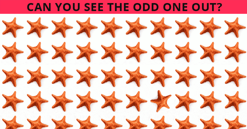 Only 1 In 30 Sharp-Eyed People Can Ace This Odd One Out Test. How About You?