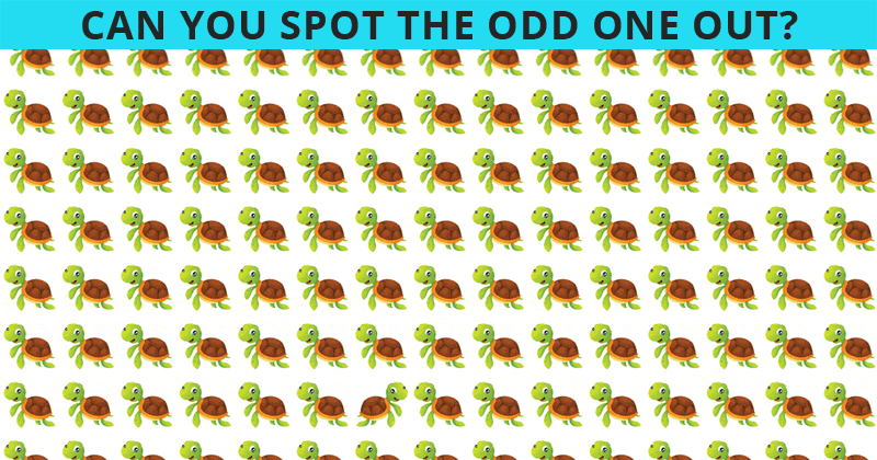 These Brilliantly Creative Odd One Out Visual Puzzles Will Test Your Visual Perception!