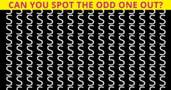 Find The Odd Letter Out – But Only People with Sharp Vision Can Pass This Test!