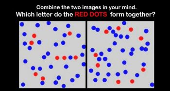 Only 1% Of The Population Can Pass This Photographic Memory Test… It's That Tough