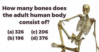 Only 3% Of Men Passed This Basic Human Anatomy Test. Can You?