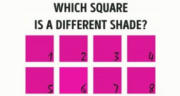 Only People With Seriously Sharp Vision Can Pass This Visual Test. Are You One Of Them?