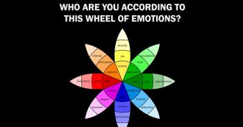 The Colors You Choose In The Famous Wheel Of Emotions Can Determine Who You Are