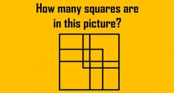 Your IQ Is Considered Higher Than Average If You Can Answer These Unusual Questions