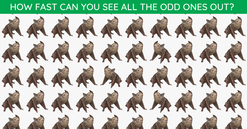 This Odd One Out Visual Quiz Will Determine Your Visual Perception!