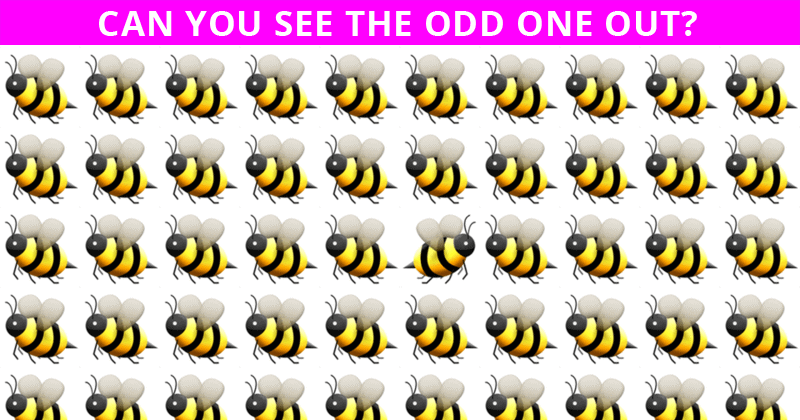 Only 1 In 30 People Can Achieve 100% In This Tough Visual Challenge. How About You?