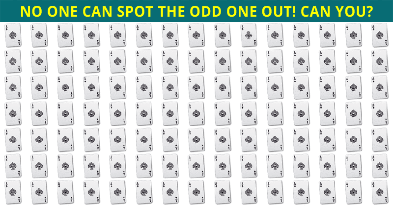 Almost No One Can Beat This Odd One Out Test. How About You?