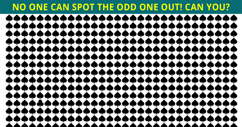 No One Can Score A Perfect 10 On This Odd One Out Visual Puzzle Without Cheating
