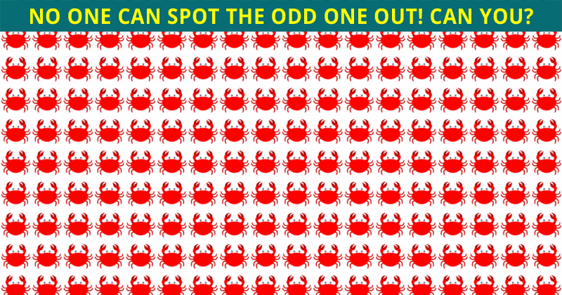 Almost No One Can Beat This Tough Test. How About You?