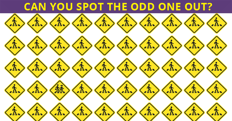 See If You Can Spot Odd One Out In All Levels Of This Visual Test