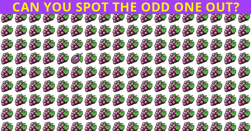 This Puzzle Will Determine Your Visual Perception Abilities!