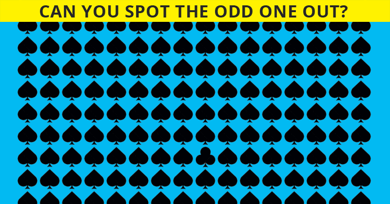 Only 4 Out Of 100 People Will Graduate From This Odd One Out Visual Puzzle! Will You?
