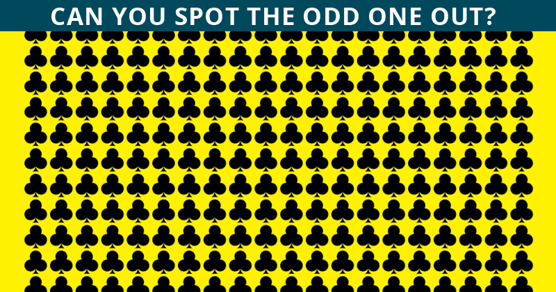 Almost No One Can Achieve 100% In This Odd One Out Visual Challenge. Are You Up To The Challenge?