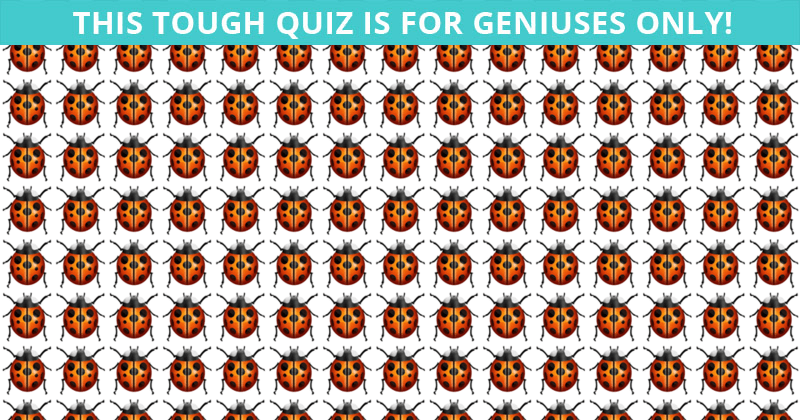 Only 1 In 35 People Can Achieve 100% In This Test. Are You Up To The Challenge?