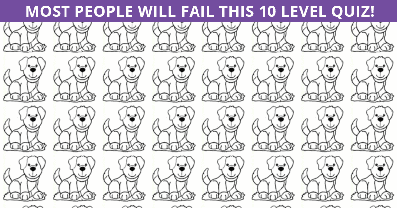 Only People With A High IQ Will Be Able To Ace This Visual Game! How About You?