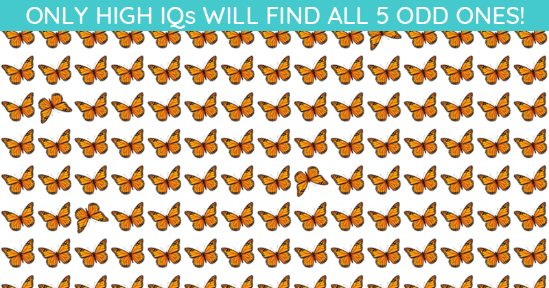 Only 1 In 30 Sharp-Eyed People Can Achieve 100% In This Difficult Odd One Out Visual Puzzle. How About You?