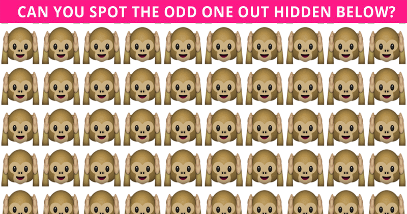 Challenge Time: This Puzzle Is Driving The Internet Crazy. Can You Spot The In Less Than 10 Seconds?