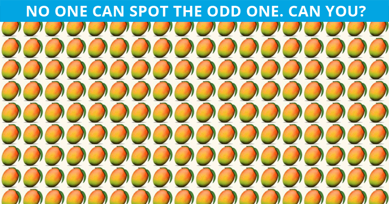 Literally Zero People Can Get 100% On This Visual Puzzle. Prove Us Wrong