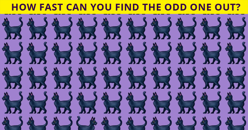 Only People With A Seriously High IQ Will Be Able To Ace This Odd One Out Visual Game!