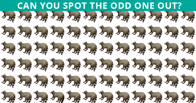 Only People With An Unusually High IQ Will Be Able To Best This Odd One Out Visual Test!