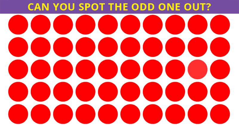 Only 1 In 30 Sharp-Eyed People Can Spot The Difference!
