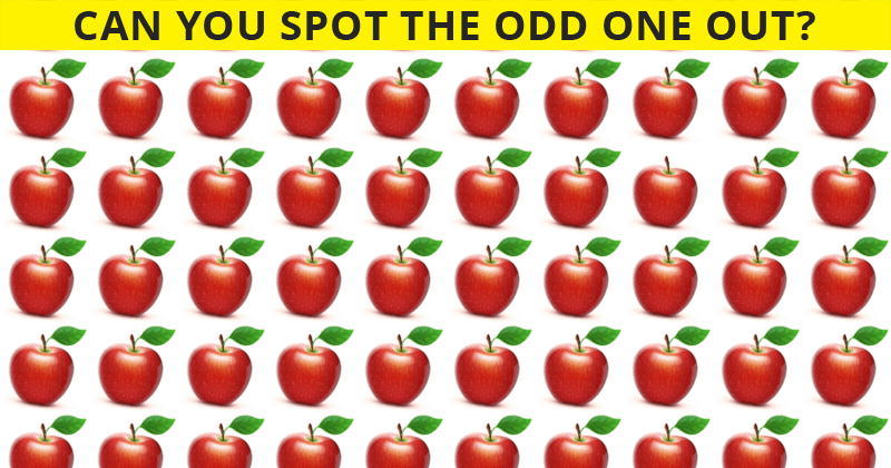 Only People With A Seriously High IQ Will Be Able To Ace This Odd One Out Test! How About You?