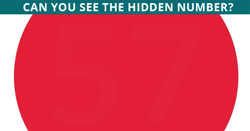 If You Can Pass This Hidden Number Visual Game In 30 Seconds, You Have Unique Eyesight