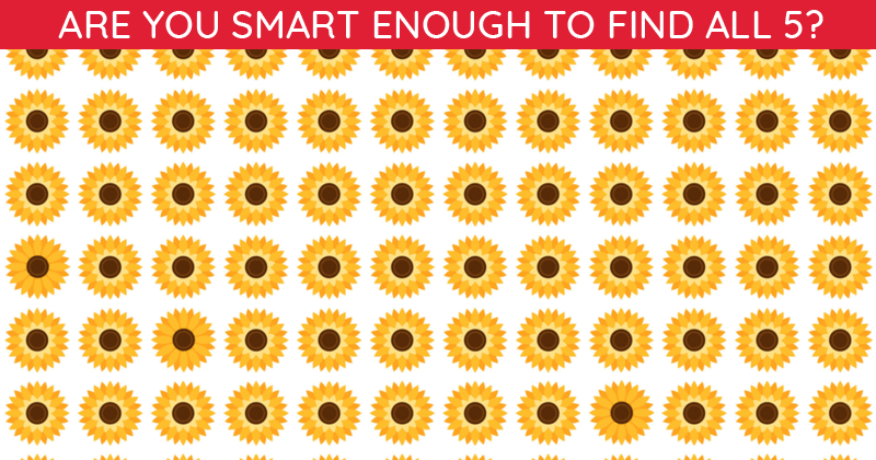 How Quickly Can You Find The Odd One Out In This Difficult Visual Challenge?