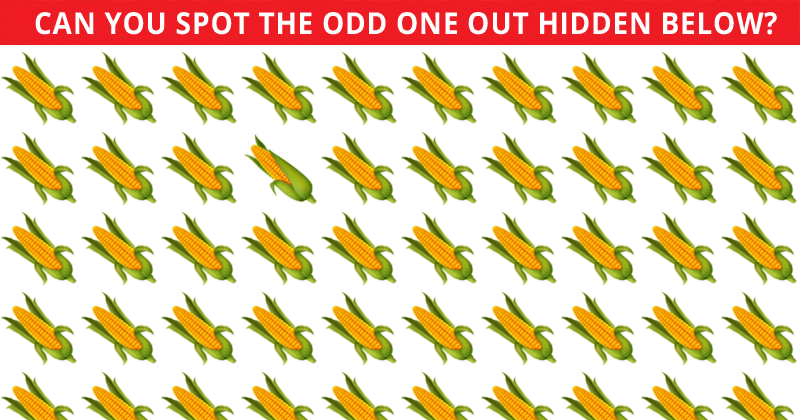 This Odd One Out Game Will Determine Your Visual Perception Abilities In Less Than One Minute