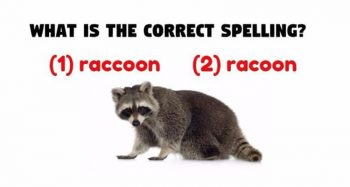 This Simple Spelling Test Is Driving The Internet Crazy. Will You Take Part?