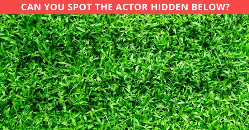 Very Few People Can Complete This Hidden Actor Visual Challenge In Less Than 60 Seconds. Can You?