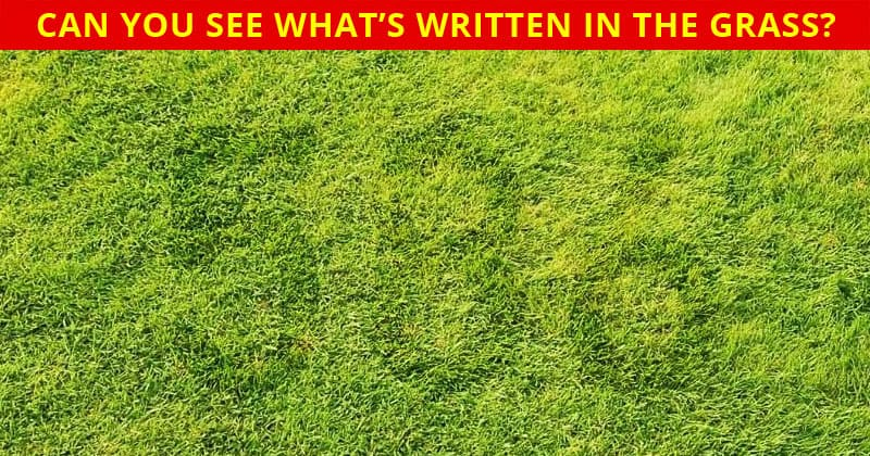 How Quickly Can You Find The Hidden Number In This Tough Visual Challenge?