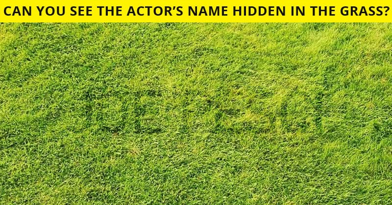 This Hidden Actor Visual Test Will Determine Your Visual Perception Abilities In About One Minute