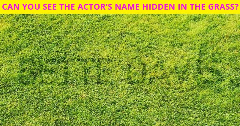 Only 1 In 30 Sharp-Eyed People Can Achieve 100% In This Hidden Actor Visual Test. Are You Up To The Task?