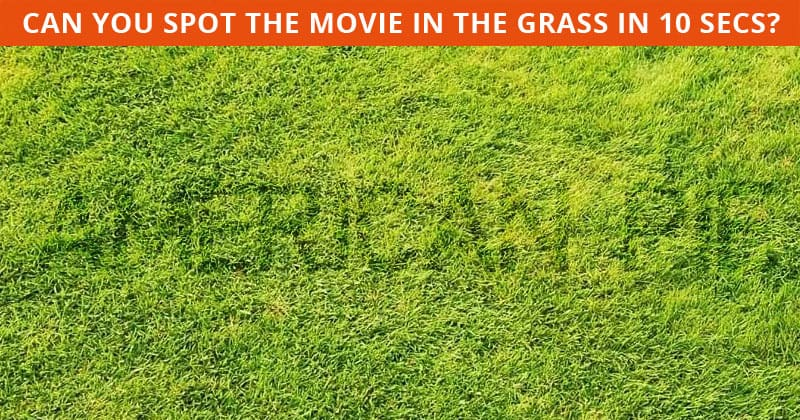 These Brilliantly Creative Hidden Movie Visual Puzzles Will Test Your Eyesight!