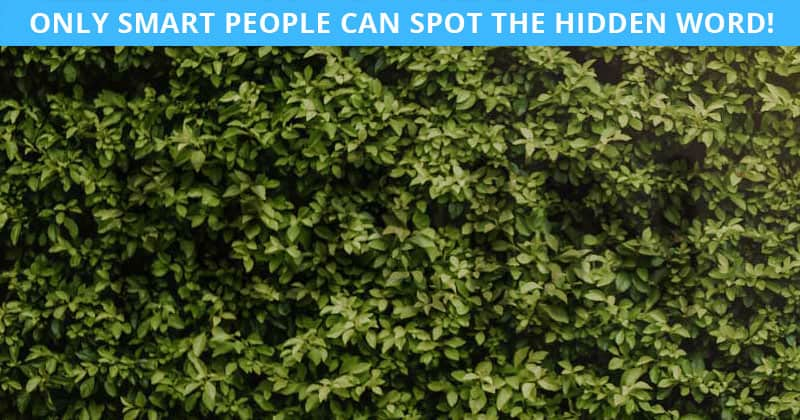 Only 5% Of People Can Ace This Hidden Word Visual Game. Are You Up To The Task?