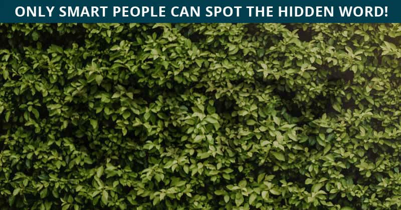 This Hidden Word Visual Test Will Determine The Sharpness Of Your Eyesight!