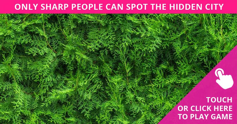 Only 1 In 30 Sharp-Eyed People Can Beat This Hidden Cities Quiz. How About You?