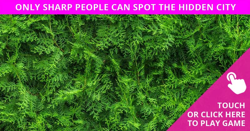 Only People With A High IQ Will Be Able To Best This Hidden City Visual Challenge! Can You?