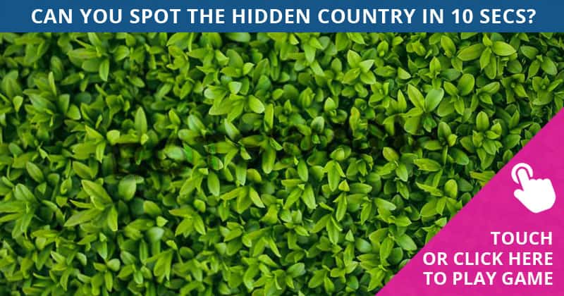 These Brilliantly Creative Hidden Country Visual Games Will Test Your Eyesight!