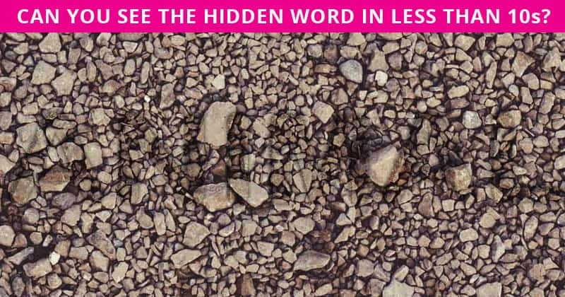 Almost No One Can Beat This Tough Hidden Word Visual Challenge. How About You?