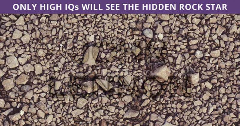 Only 5% Of People Can Ace This Difficult Hidden Rock Stars Visual Test. How About You?