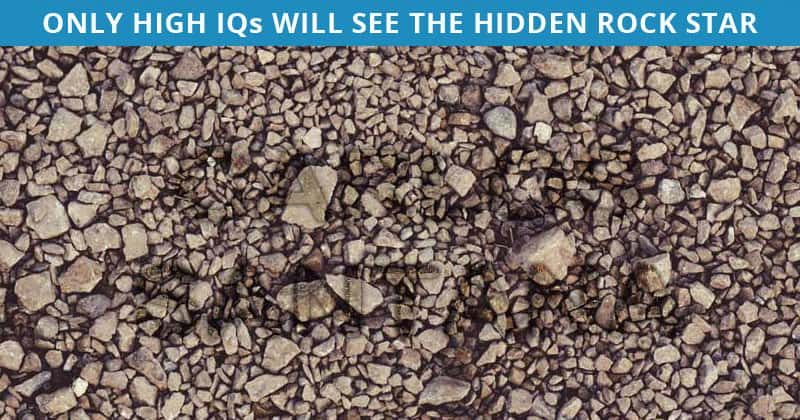 Amazing Hidden Rock Stars Test To Check Your Focusing Abilities Only 1 Person Out Of 95 Can Do It. How About You?