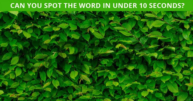 Only 1 In 40 People Can Beat This Hidden Word Quiz. How About You?