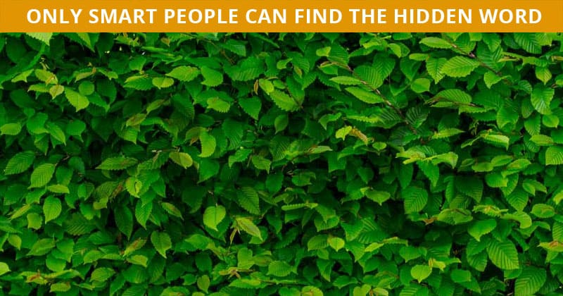 Only 1 In 30 Sharp-Eyed People Can Ace This Challenging Hidden Number Quiz. How About You?
